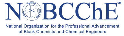 society of chemical engineers